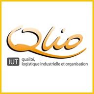 LOGO_QLIO